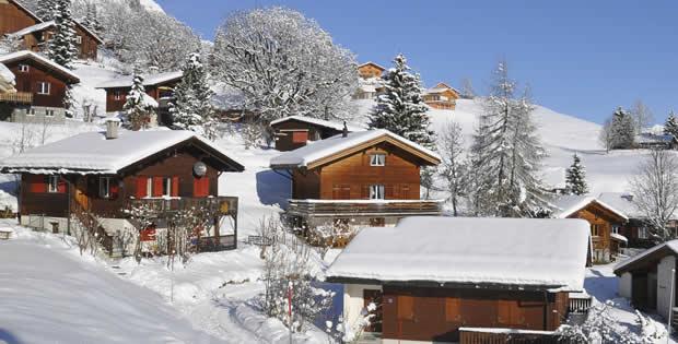 Chalets winter in Flachau