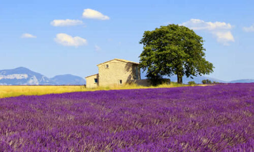 Vakantiehuizen en vakantieparken Provence