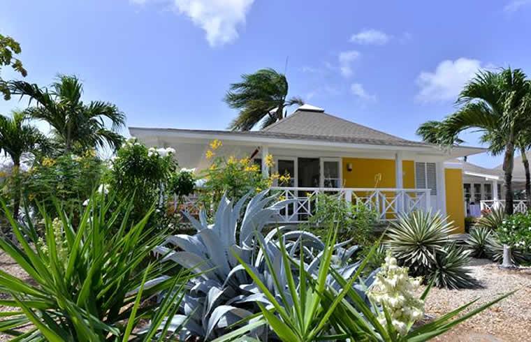 chogogo dive & beach resort Curaçao