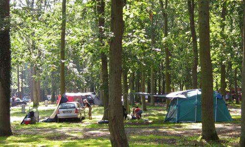 Aanbiedingen camping Camp. & Ferienpark Markgrafenheide in Markgrafenheide