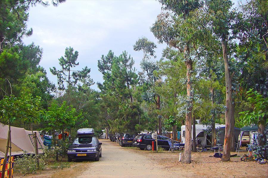 camping in Aléria