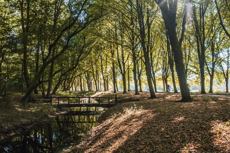 EuroParcs Citycamping Het Amsterdamse Bos