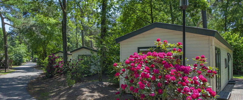 vakantiepark Nederland voorjaarsvakantie